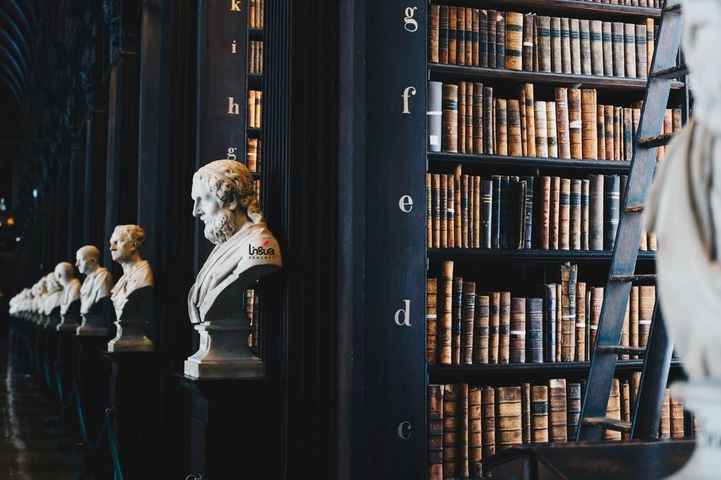 Библиотека с бюстами
