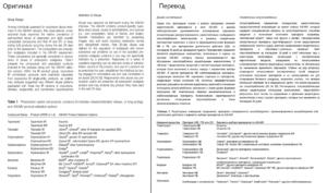 научно-технический перевод
